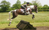 Activities at Arley Moss Equestrian