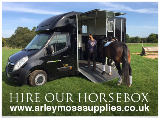 Arley Moss Now Sell Rugs online