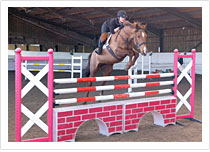 Equestrian Facilities To Hire